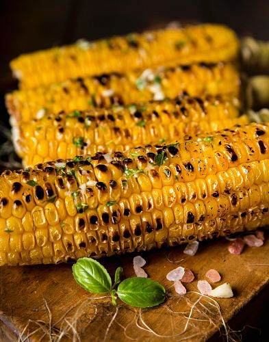 photo selective focus photography of grilled corns free for commercial use images