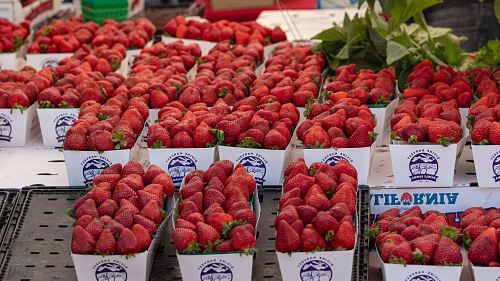strawberries on display