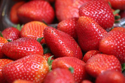 strawberry fruit photography