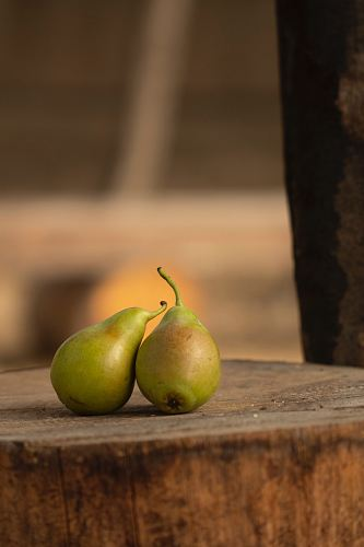 two pears on wood