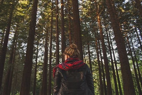woman wearing black jacket looking at trees