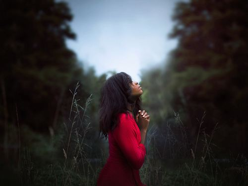 photo woman wearing red sweatshirt looking at top between trees near grass during daytime free for commercial use images