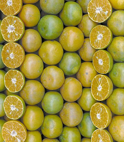 yellow and green lemon fruits