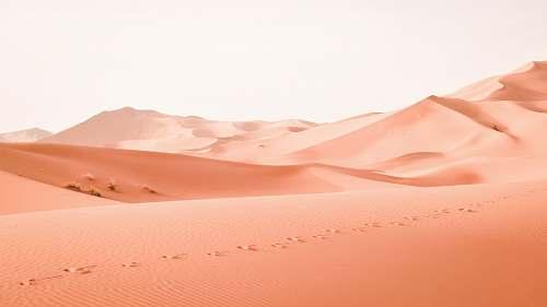 desert landscape photography of dessert orange