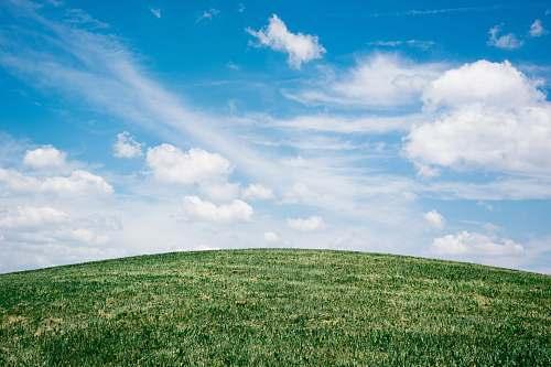 field landscape of grass field under blue sky grassland