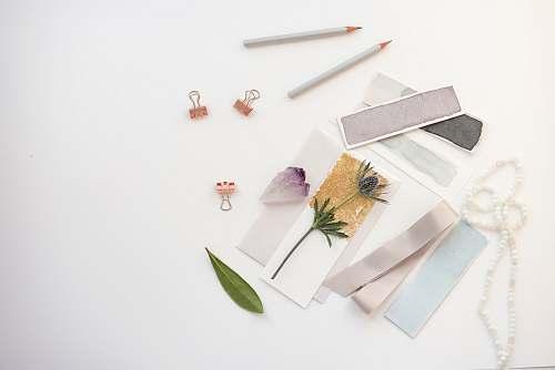 flatlay flowers on card near pencil clips