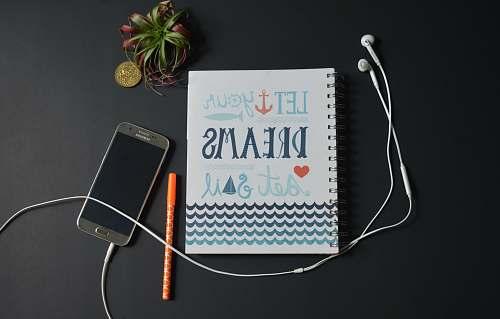 plant let your dreams set sail quote grey