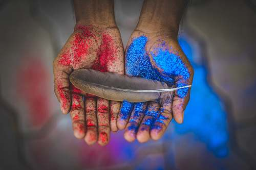 light top view photography of brown feather on blue and red painted hands feather