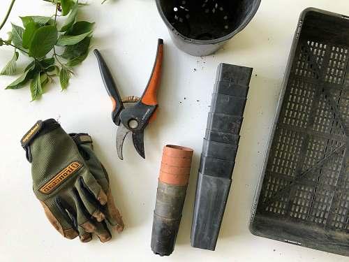 garden black pruning shears beside green gloves gardening