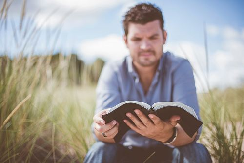 man reading book in grass field