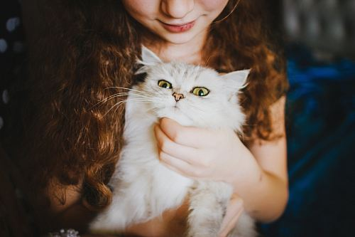 woman holding white cat
