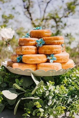 dessert baked doughnuts pastry
