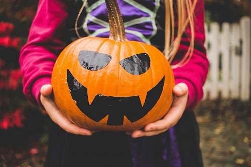 halloween selective focus photography of person holding pumpkin human