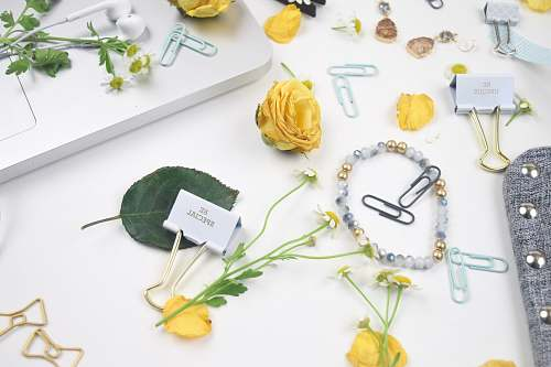 yellow florals flatlay photo of flowers, paper clips, and bracelet dragonfly ave