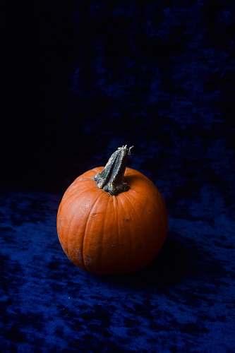 food round red pumpkin pumpkin
