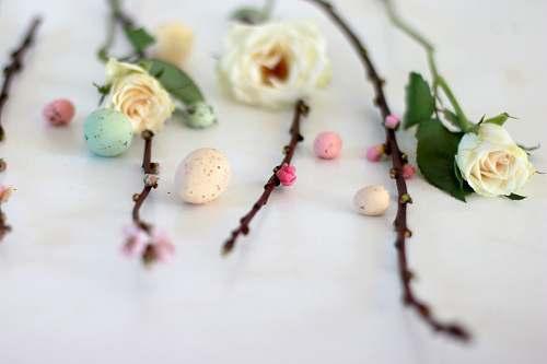 flower assorted-color decorative easter