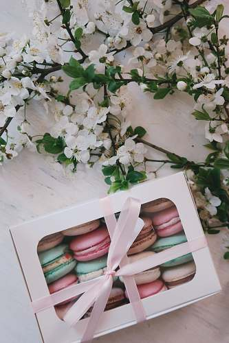 food French macarons in white box flower