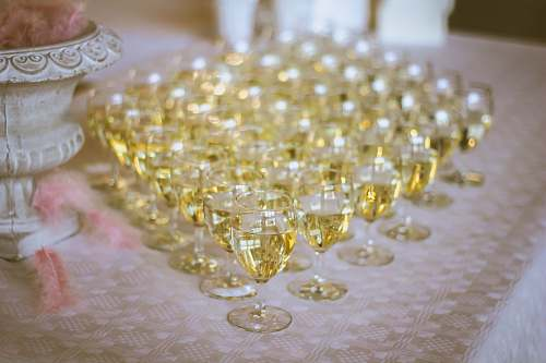 glass clear wine glass lot filled with yellow liquid wine