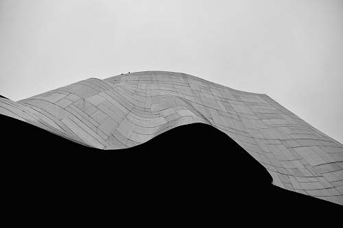 black-and-white grayscale photo of curve structure nature