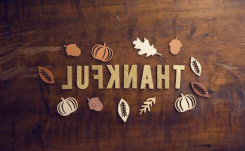 thanksgiving brown wooden board fall