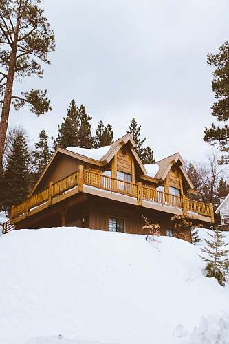 building brown house covered and surrounded by snow cabin