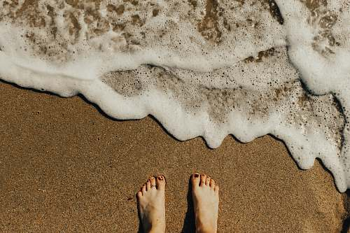 feet person's feet on seashore busan