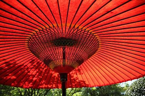 red red patio umbrella circular