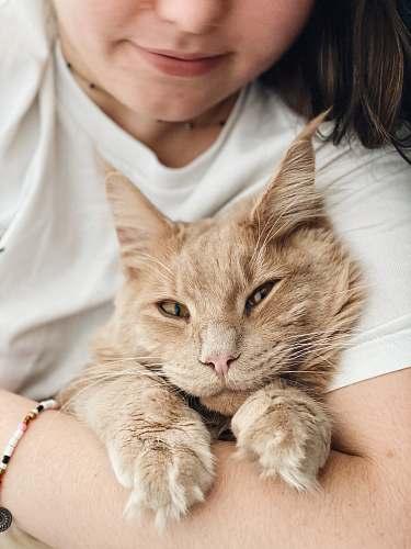animal woman in white tank top holding orange tabby cat pet