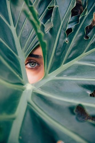woman peeking over green leaf plant taken at daytime