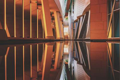 paris brown and black narrow building with reflection on the water photography france