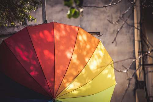 photo pottery multi-colored umbrella hanged on pole potted plant free for commercial use images