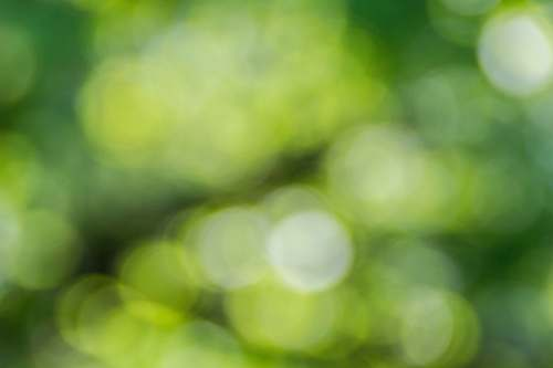 background green and yellow light bokeh texture