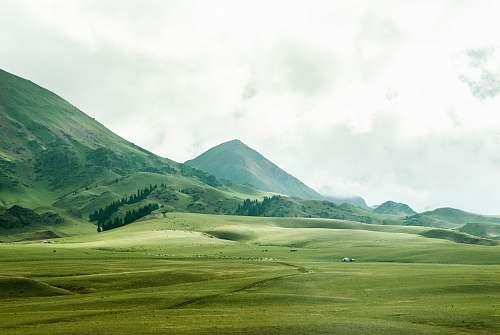 landscape bird's eye view of grassland beside mountain field