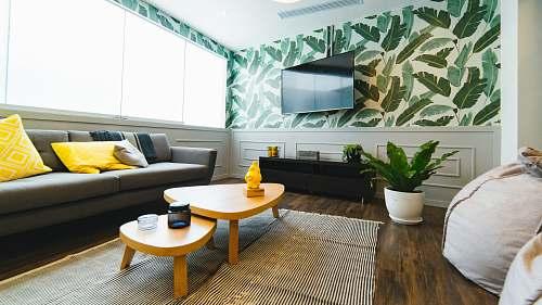 interior photo of flat screen television plant