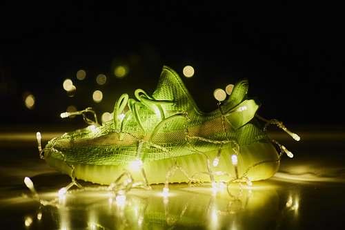 lizard lighted green adidas sneaker animal