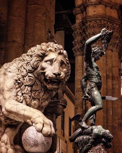 wildlife brown lion statue lion