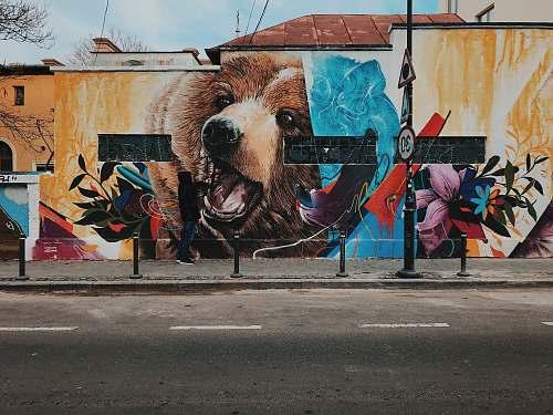 graffiti grizzly bear wall paint mural