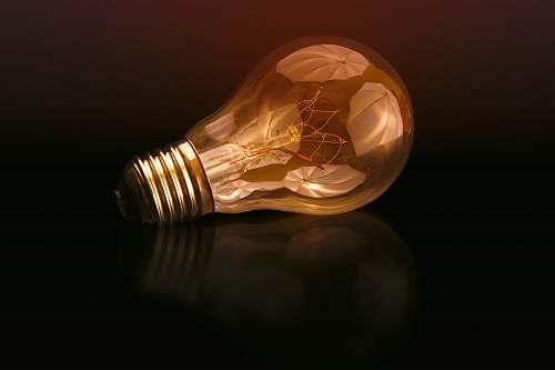 lightbulb incandescent bulb on black surface reflection