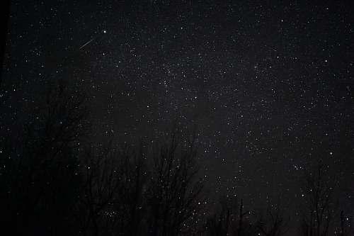 black white stars at night nature