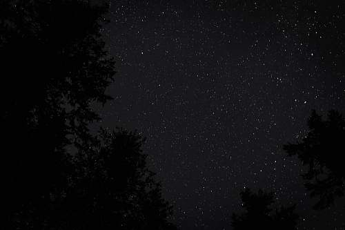 nature low angle photography of starry night black-and-white