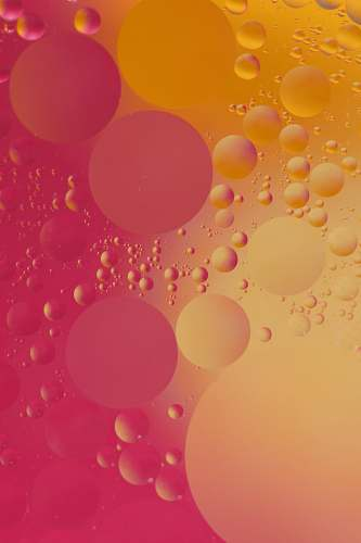 macro pink and orange bubble digital wallpaper macro photo