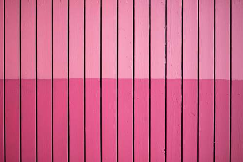 photo texture closeup photo of pink paint plank wall background free for commercial use images