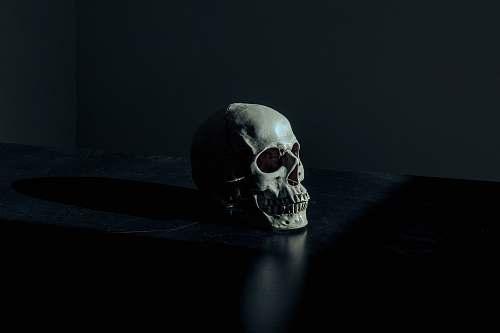 dark white and black skull figurine on black surface death