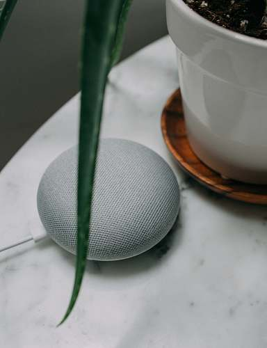 photo tub chalk Google Home Mini speaker near plant pot on white surface google free for commercial use images
