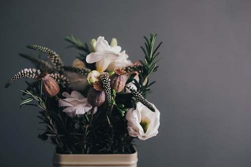 floral white petal flowers in gray pot in room flower arrangement