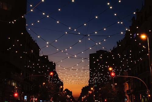 outdoors string lights during night time lights