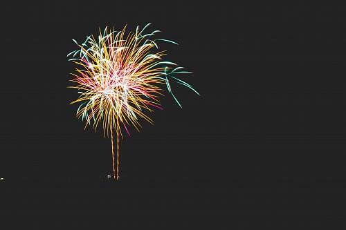 night yellow, blue, and red chrysanthemum firework fireworks